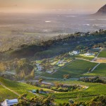 constantia-glen-vineyards